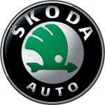 Удалить сажевый фильтр Skoda